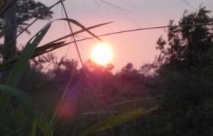 Soleil 2